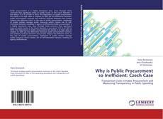 Bookcover of Why is Public Procurement so Inefficient: Czech Case