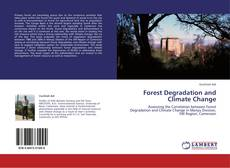 Forest Degradation and Climate Change的封面
