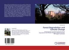 Capa do livro de Forest Degradation and Climate Change