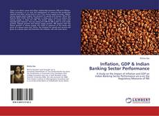 Bookcover of Inflation, GDP & Indian Banking Sector Performance