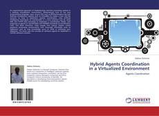 Bookcover of Hybrid Agents Coordination in a Virtualized Environment