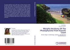 Bookcover of Morpho-Anatomy Of The Phaeophycota From Karachi Coast