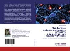 Морфогенез нейроэндокринного аппарата поджелудочной железы человека的封面