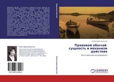 Bookcover of Правовой обычай:  сущность и механизм действия