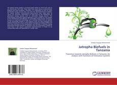 Bookcover of Jatropha Biofuels in Tanzania