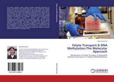 Copertina di Folate Transport & DNA Methylation:The Molecular Approach