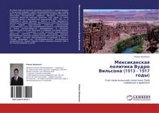 Bookcover of Мексиканская политика Вудро Вильсона (1913 - 1917 годы)