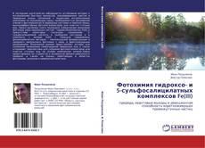 Bookcover of Фотохимия гидроксо- и 5-сульфосалицилатных комплексов Fe(III)