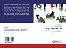 Bookcover of Occupational Choice