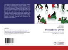 Buchcover von Occupational Choice