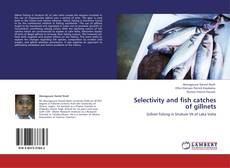Bookcover of Selectivity and fish catches of gillnets