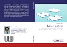 Bookcover of Business Incubator