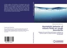 Asymptotic behavior of viscous fluids on rough boundaries kitap kapağı
