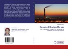 Обложка Combined Heat and Power