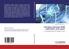 Bookcover of Interplay between DNA replication and repair