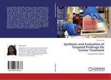Synthesis and Evaluation of Targeted Prodrugs for Cancer Treatment的封面