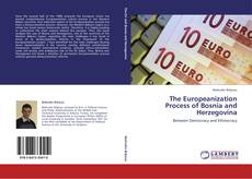 Bookcover of The Europeanization Process of Bosnia and Herzegovina