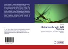 Bookcover of Hydrometallurgy in Gold Recovery