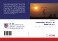 Sustaining Privatization of Infrastructure的封面