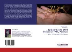 Обложка Spiders' Fauna of FR Peshawar, FATA, Pakistan