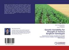 Borítókép a  Genetic Variability for Drought in Various Sorghum Genotypes - hoz