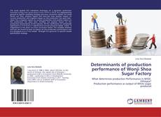 Bookcover of Determinants of production performance of Wonji Shoa Sugar Factory