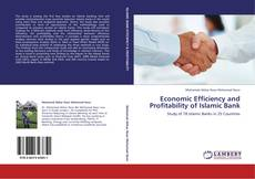 Bookcover of Economic Efficiency and Profitability of Islamic Bank