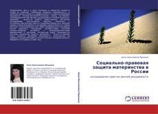 Portada del libro de Социально-правовая защита материнства в России
