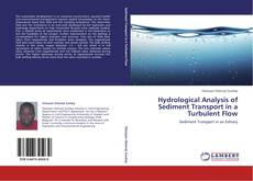 Bookcover of Hydrological Analysis of Sediment Transport in  a Turbulent Flow