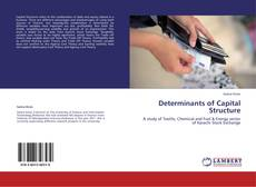 Determinants of Capital Structure kitap kapağı