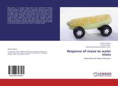 Bookcover of Response of maize to water stress
