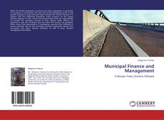 Bookcover of Municipal Finance and Management