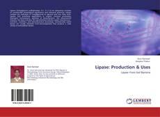 Capa do livro de Lipase: Production & Uses