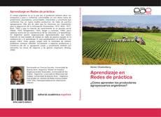 Buchcover von Aprendizaje en Redes de práctica