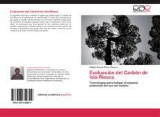 Portada del libro de Evaluación del Carbón de Isla Riesco