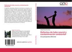 Bookcover of Defectos de tubo neural y contaminación ambiental