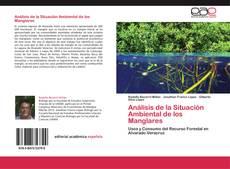 Análisis de la Situación Ambiental de los Manglares的封面
