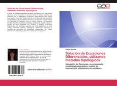 Copertina di Solución de Ecuaciones Diferenciales, utilizando métodos topológicos