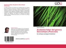 Borítókép a  Anatomía foliar del género Sacciolepis (Poaceae) - hoz