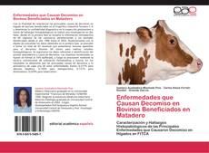Bookcover of Enfermedades que Causan Decomiso en Bovinos Beneficiados en Matadero