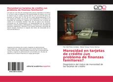 Bookcover of Morosidad en tarjetas de crédito ¿un problema de finanzas familiares?