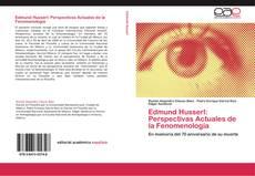 Copertina di Edmund Husserl: Perspectivas Actuales de la Fenomenología