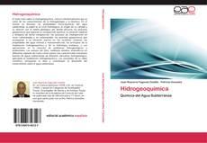 Copertina di Hidrogeoquímica