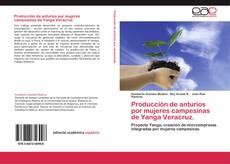 Bookcover of Producción de anturios por mujeres campesinas de Yanga Veracruz.