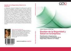 Buchcover von Gestión de la Seguridad y Salud en la Empresa