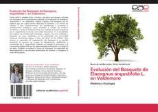 Bookcover of Evolución del Bosquete de Elaeagnus angustifolia L. en Valdemoro