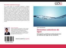 Buchcover von Derechos colectivos de agua