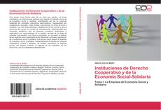 Instituciones de Derecho Cooperativo y de la Economía Social-Solidaria的封面