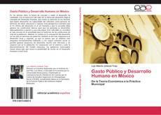 Bookcover of Gasto Público y Desarrollo Humano en México