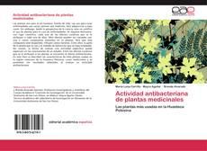Capa do livro de Actividad antibacteriana de plantas medicinales